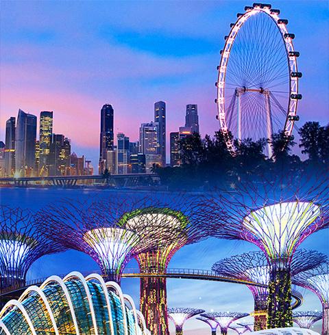 싱가포르 마리나베이 플라이어 (관람차) 가든스바이더베이 입장권 티켓 (2개돔)
