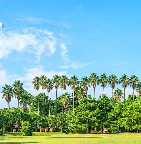 제주 한림공원 입장권