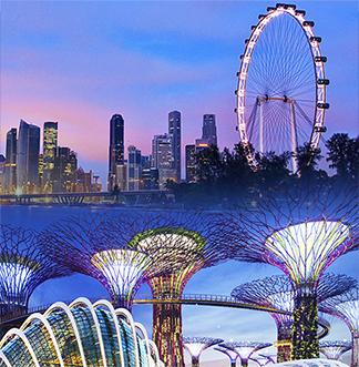 싱가포르 플라이어 + 가든스 바이 더 베이 입장권