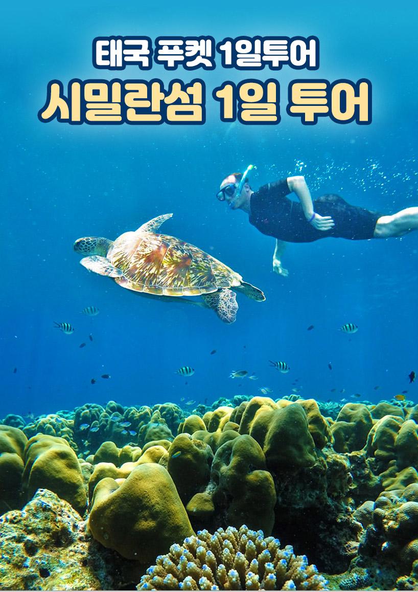 태국 푸켓여행 시밀란섬 15일 투어 + 스피드보트 픽업/샌딩 포함 15,15원