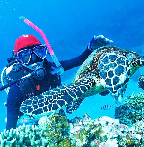 코타키나발루여행 툰구 압둘라만 보트 체험다이빙 (픽업/샌딩)
