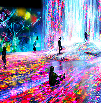 도쿄 모리빌딩 디지털 아트뮤지엄 - 팀랩 보더레스 입장권