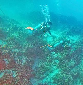 세부 체험 다이빙 투어 (한국인 강사)